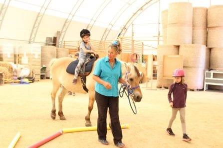 Beitragsbild-LernenmitPferden