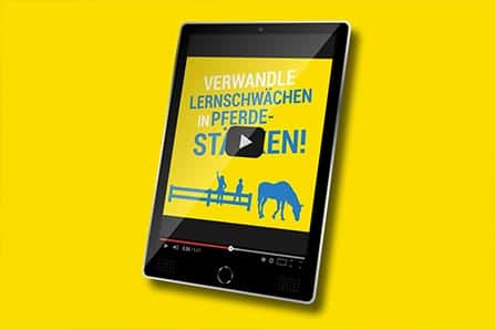 LMP-Video-Beitragsbild