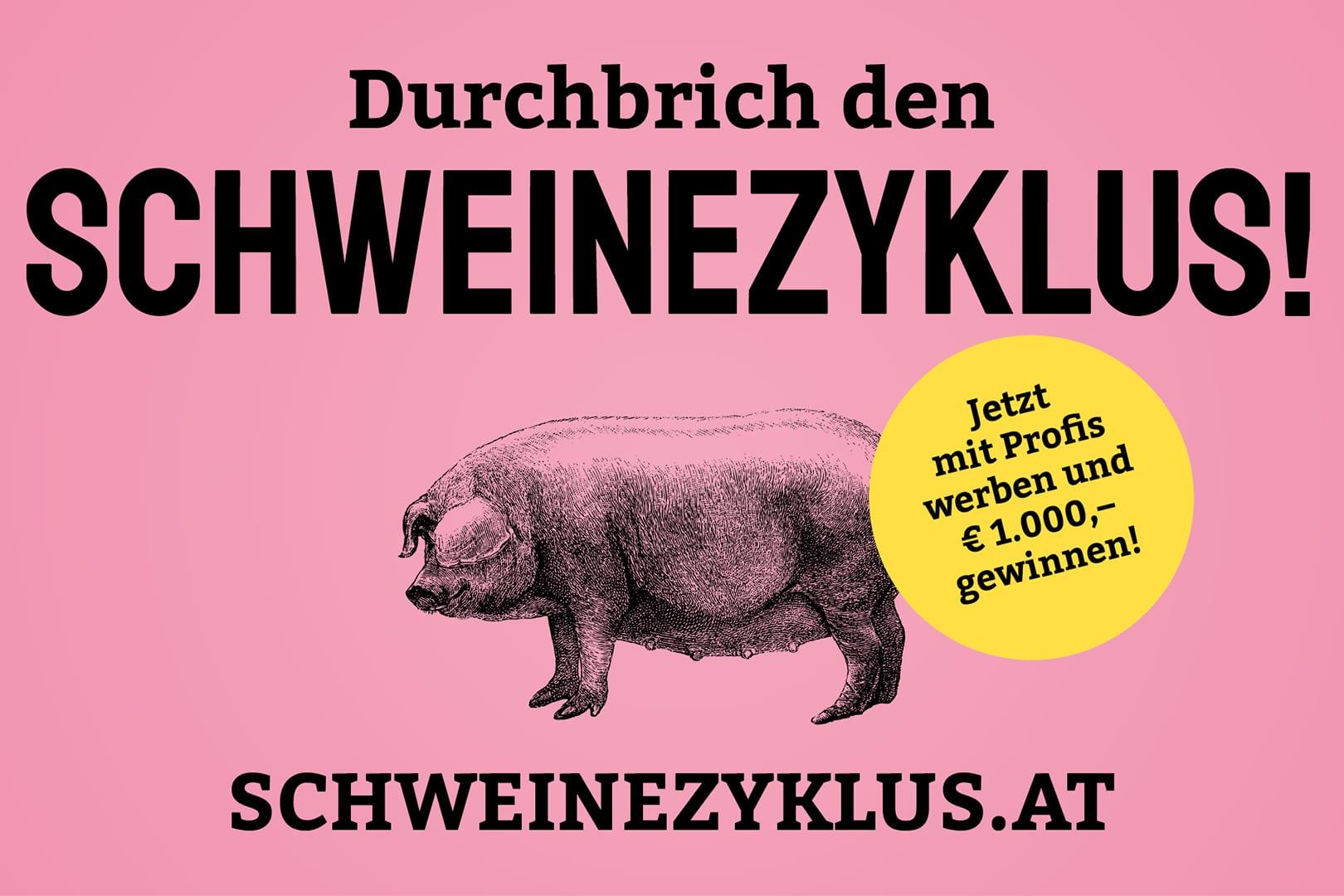 Schweinezyklus